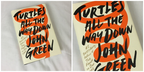 john green turtles all the way down tartarugas ate la embaixo