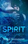 SPIRIT-KEMMERER-Repack